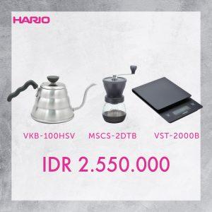 MSCS-2DTB+VKB-100HSV+VST-2000B