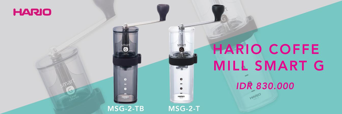 Website hario-MSG-2T