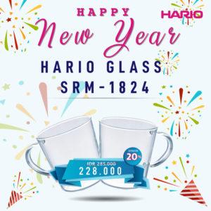 Hario Glass SRM-1824