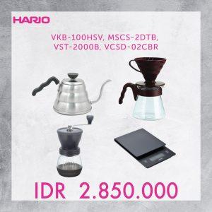 VKB-100-HSV+MSCS-2DTB+VST-2000B+VCSD-02CBR