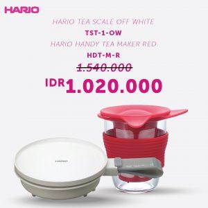 Hario Bundling Tea Maker (TST-1-OW, HDT-M-R)